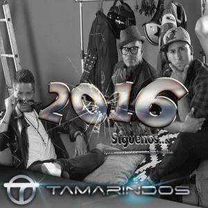 TAMARINDOS 2016-1