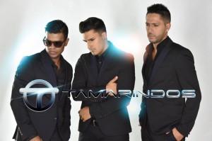 TAMARINDOS 2016-3