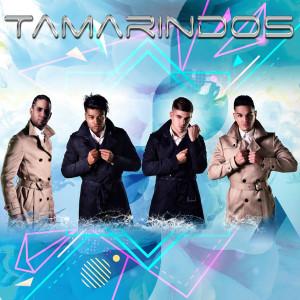 TAMARINDOS 3